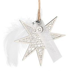 Räder étoile argentée Joyeux Noël et plume à accrocher
